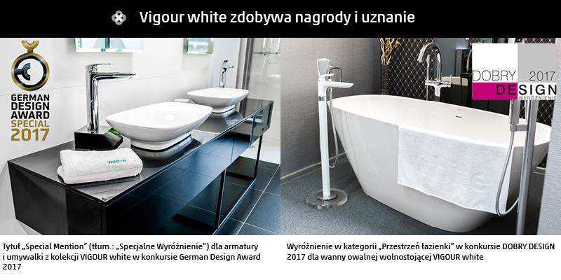 wyróżnienia-vigour-2017